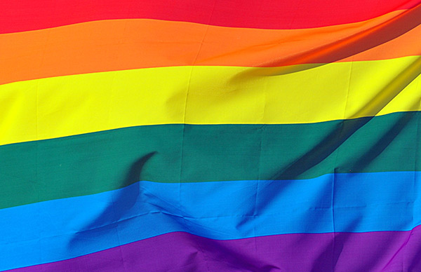 Image result for Pride Month Flag